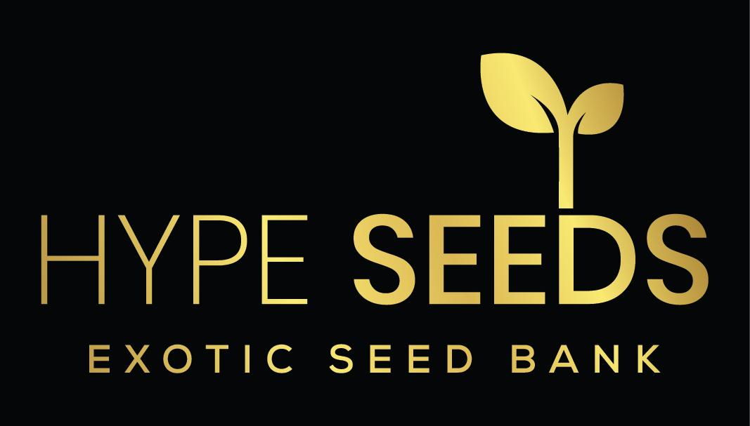 Hype Seeds