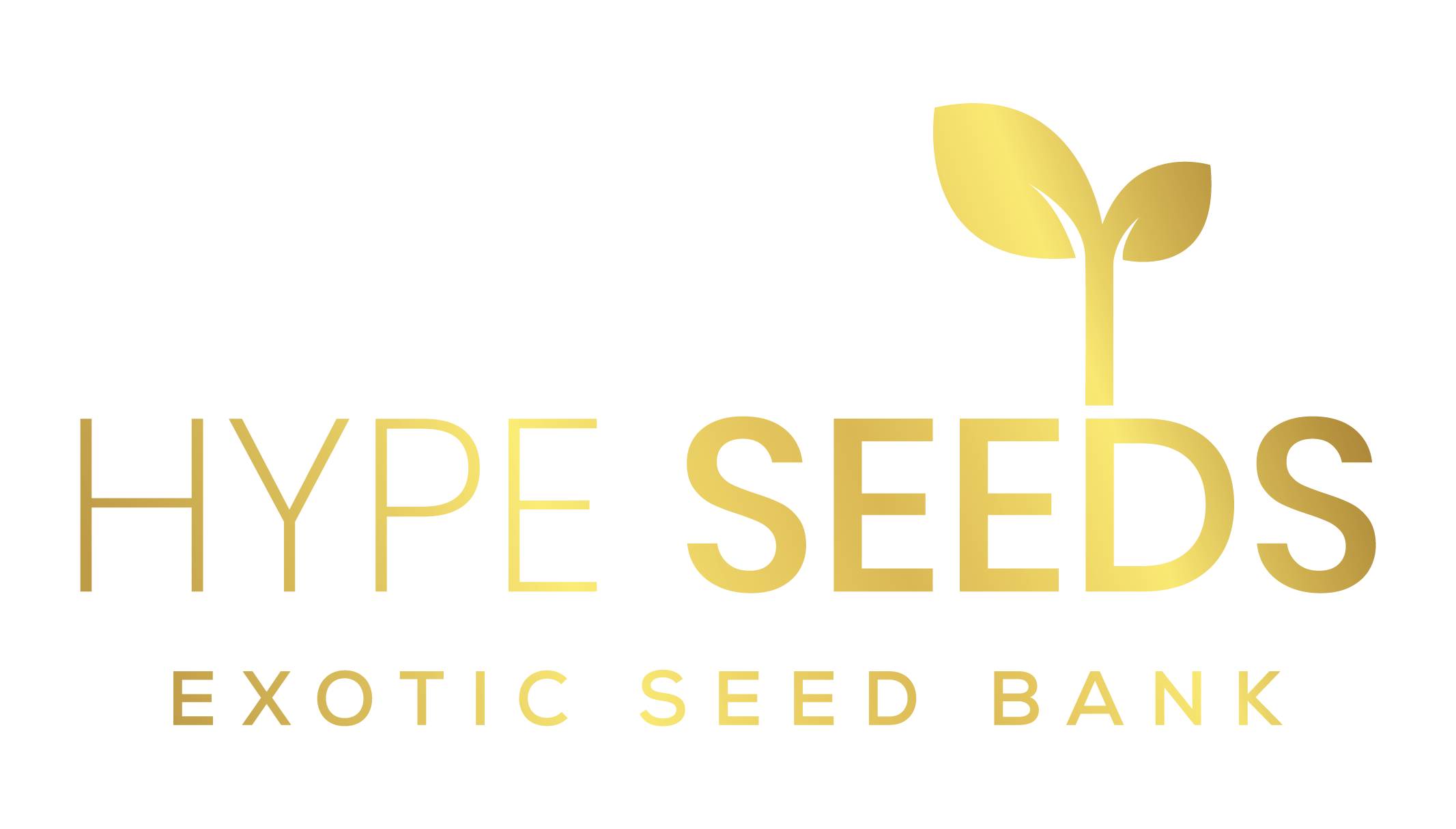 Hype Seeds Seed Bank